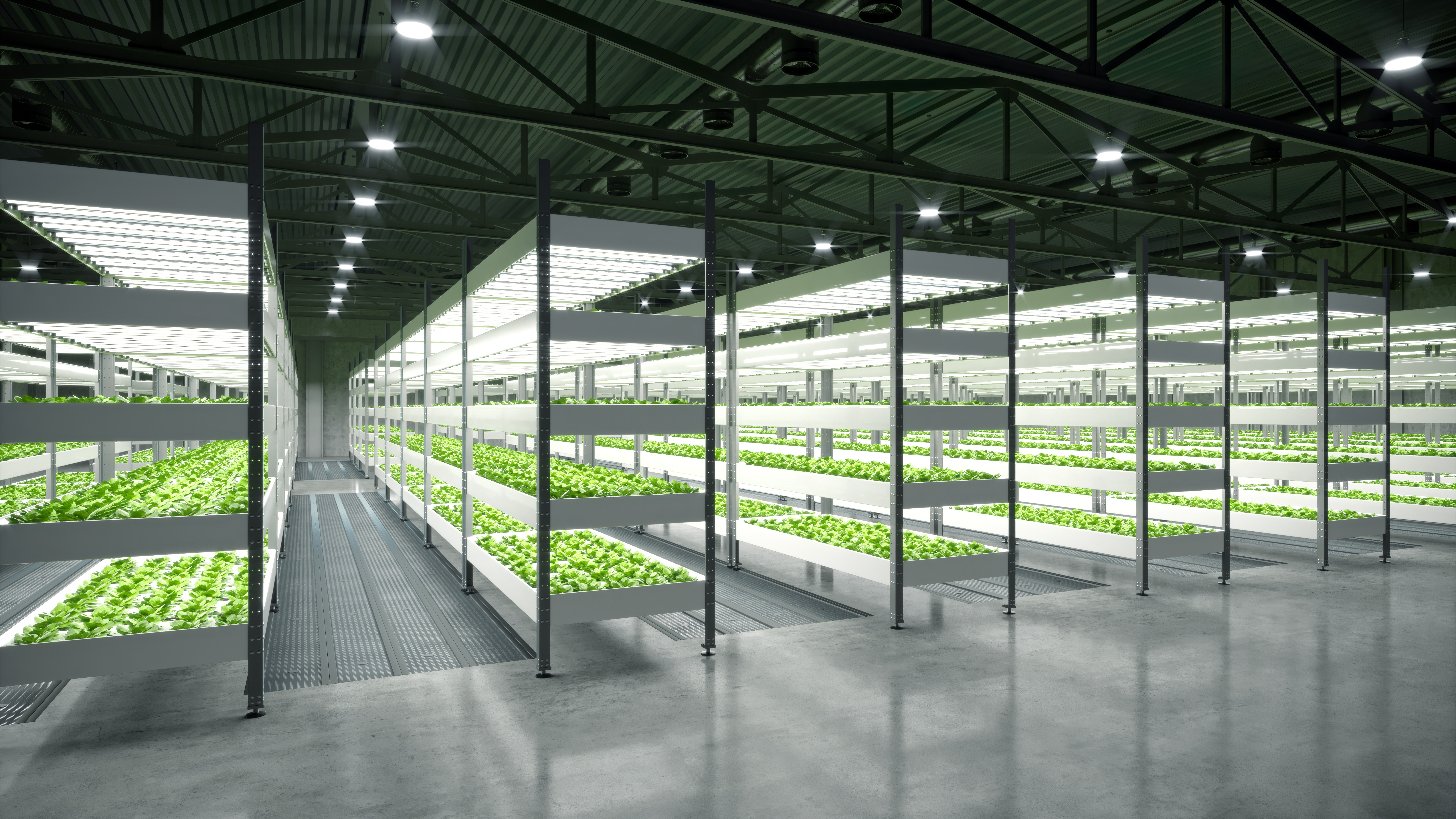Vertical Farming: A new future for food production?